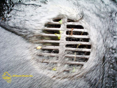 All Storm Drains Inc. | Storm Water Drains Service | Nassau & Suffolk County, Long Island, NY | Phone: 516.825.1010 Fax: 631.475.2898 | George@AllStormDrains.com